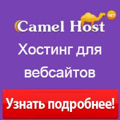 Абузоустойчивый хостер CamelhostLV