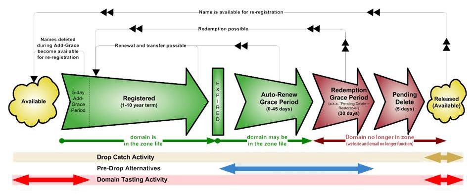 Жизненный цикл gTLD домена